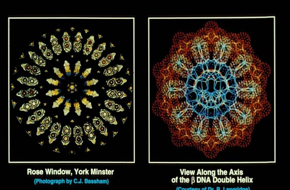 Intelligentdesign stainedglass illustration 1000words
