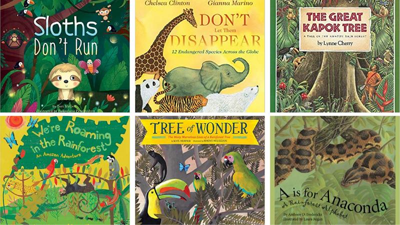 Best Rainforest Books for Kids, As Chosen by Educators