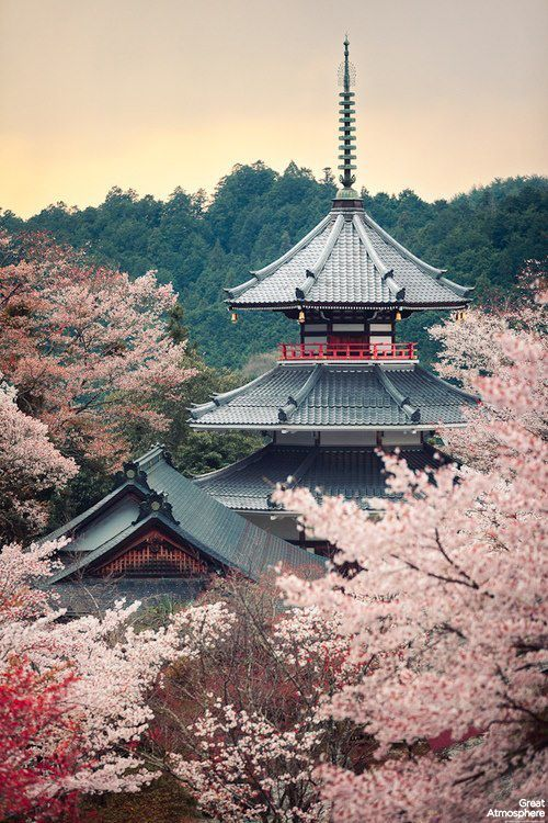 Kyoto in Spring #LoxleyTravel