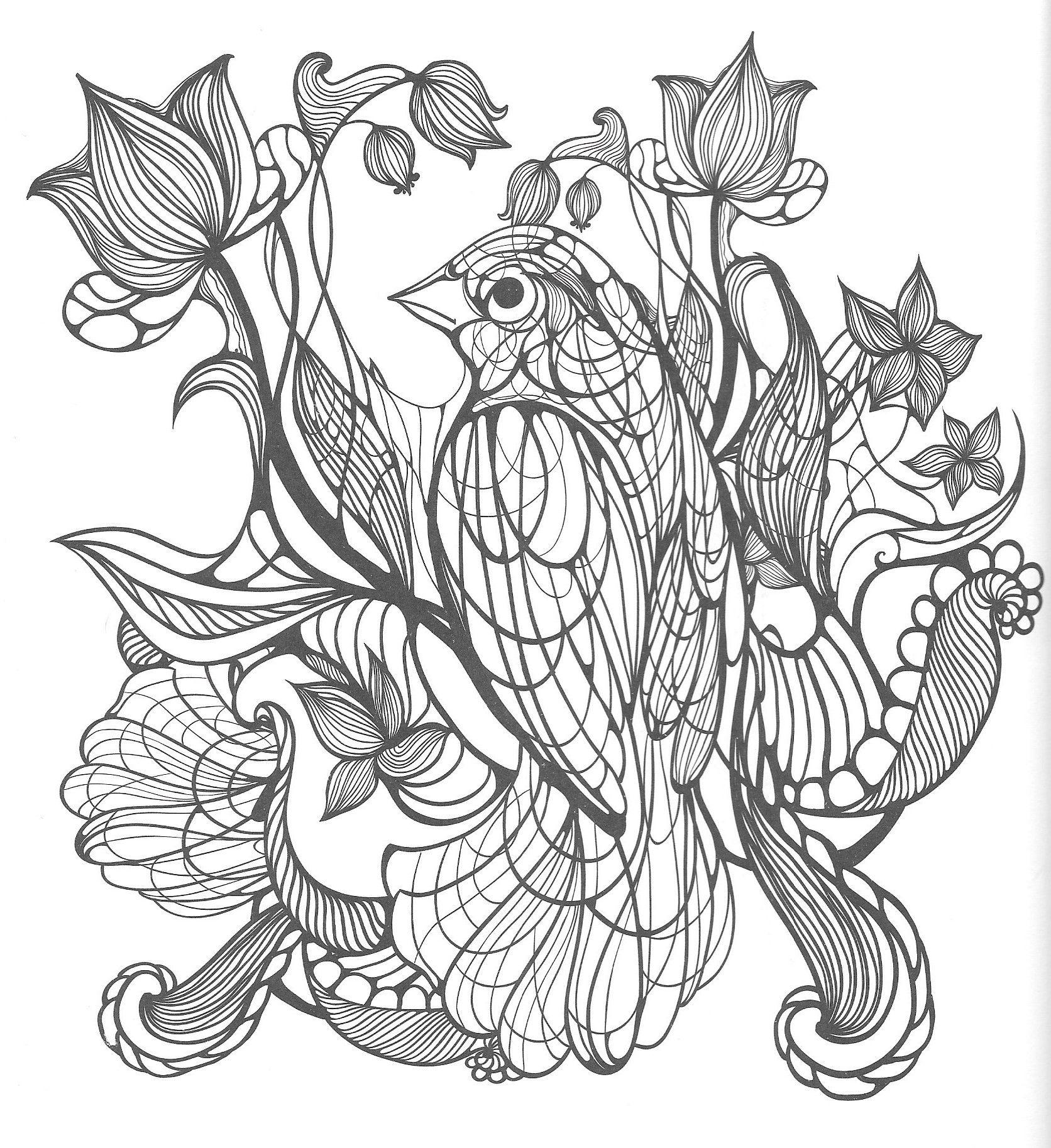 Malvorlagen # Colorful # Bird # Vogel # Ausmalen   Malvorlagen ...