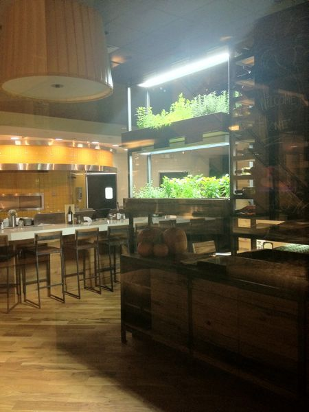 California Pizza Kitchen in Somerset Mall is growing herbs in the - California Pizza Kitchen Chicago
