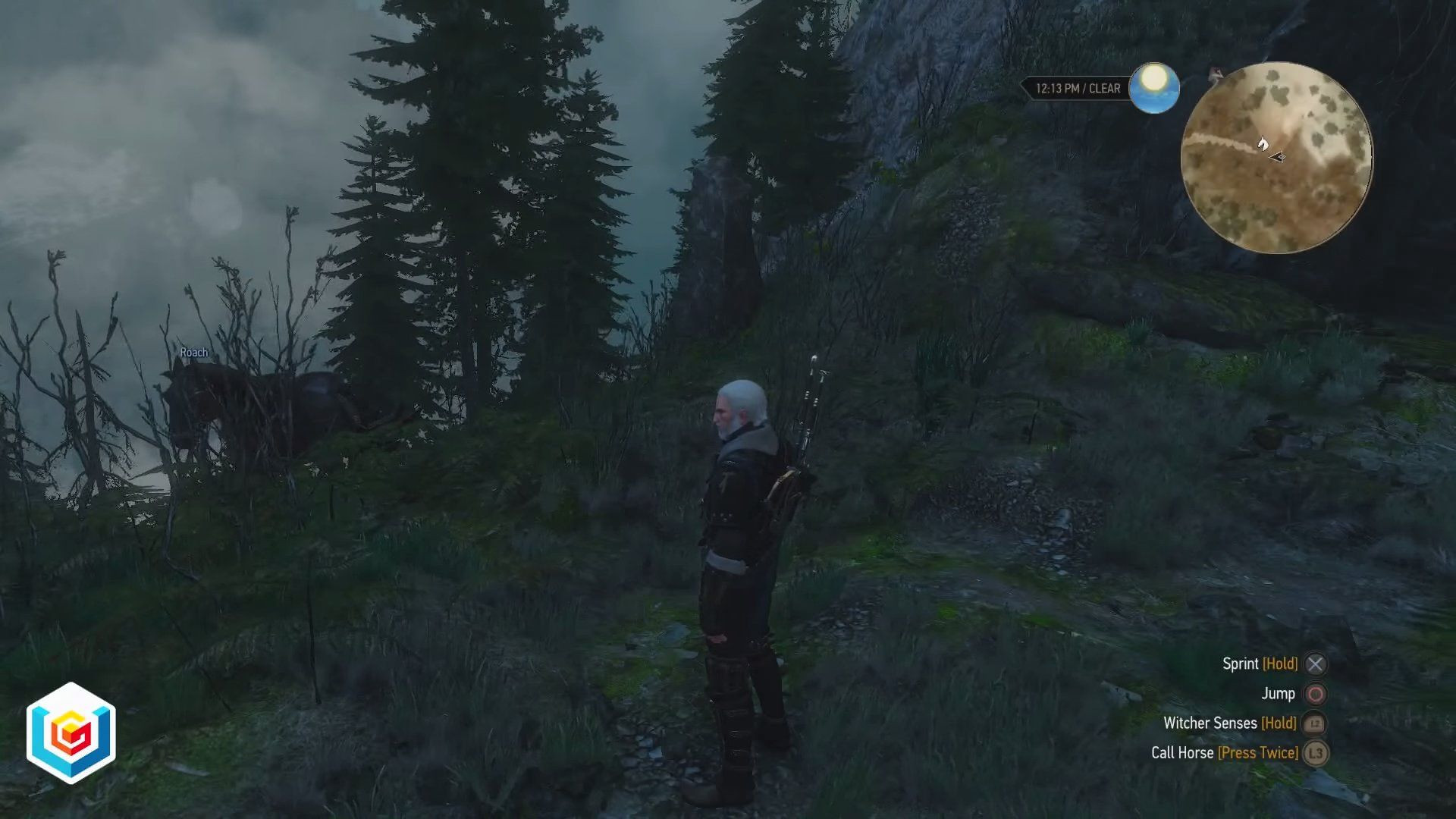 The Witcher 3 Wild Hunt Greenhouse Effect Secondary Quest