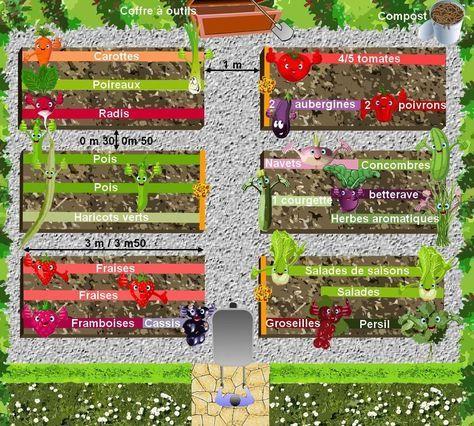 plan de potager céer son potager biologique Cultivée Pinterest