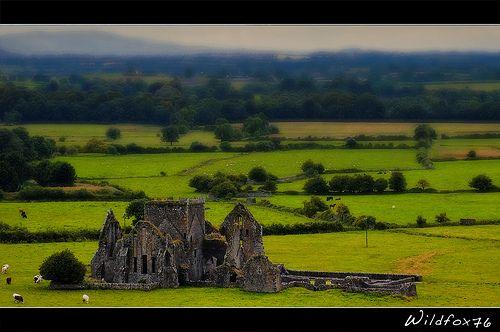 Ancient ruins Hore Abbey, Tipperary - Ireland -