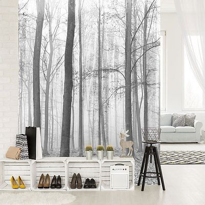 vlies fototapeten fototapete tapete wald baum natur bild foto nebel 3fx11223vea in 2019. Black Bedroom Furniture Sets. Home Design Ideas