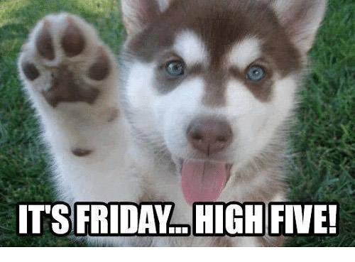 Cute Dogs,It' s Friday....High Five Siberian husky