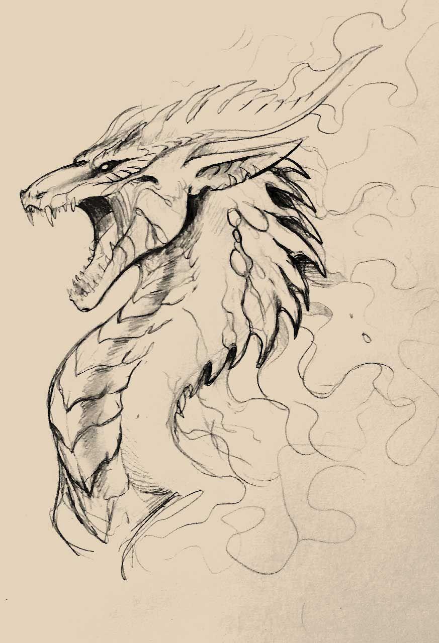 Pin De Junior Arevalo En Animales Sketches Drawings Y Dragon