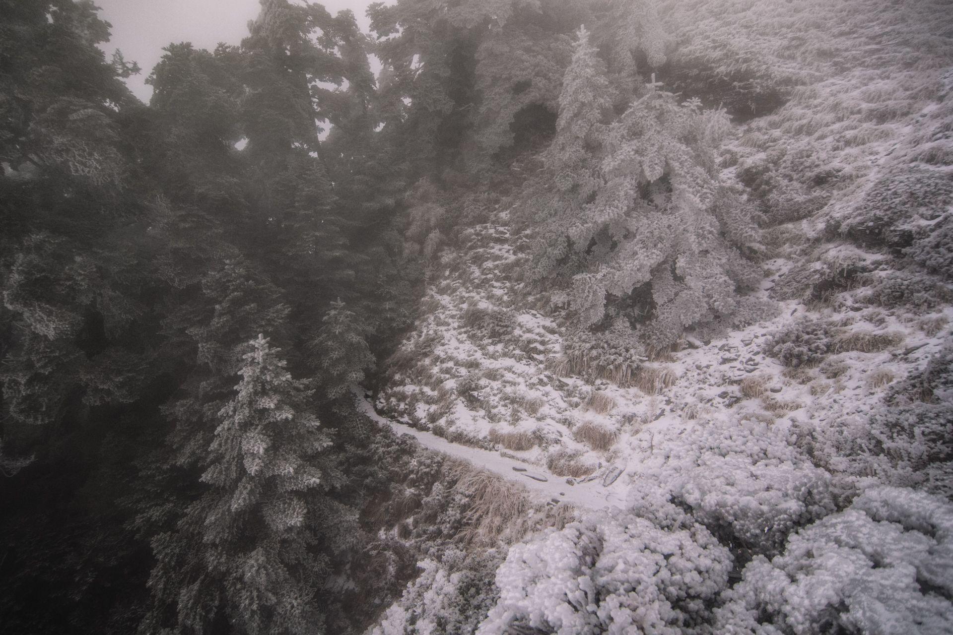 Taiwan,Nantou - Chilai Mountain(奇萊主北)_Snow season by ChiaChu Wang #nature #photography