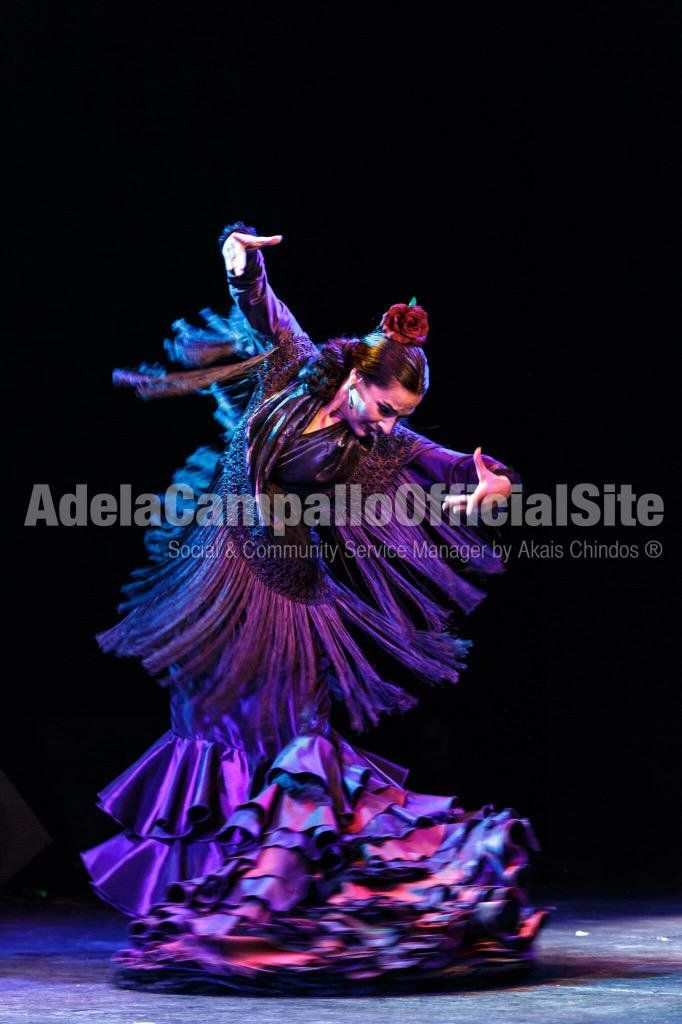 Adela Campallo On Flamenco Y Flamencos Pinterest Flamenco