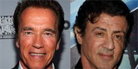 Sylvester Stallone And Arnold Schwarzenegger May Be In 'The Tomb'