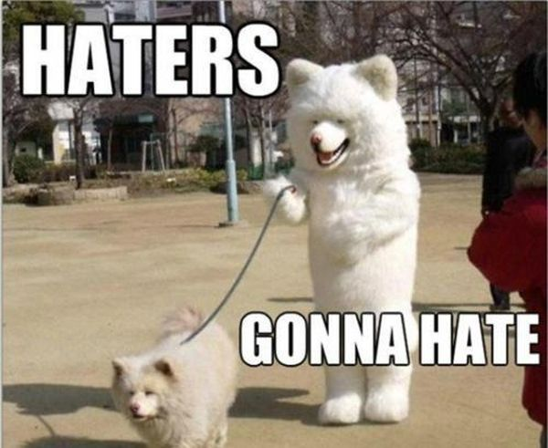 Funny Meme Dog : Lists of hysterical dog memes funny memes dogs cute youtube
