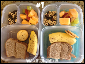 Healthy To-Go Lunches for Little Ones (And 5 Places We Take Them Other Than School) - Smartter Each Day