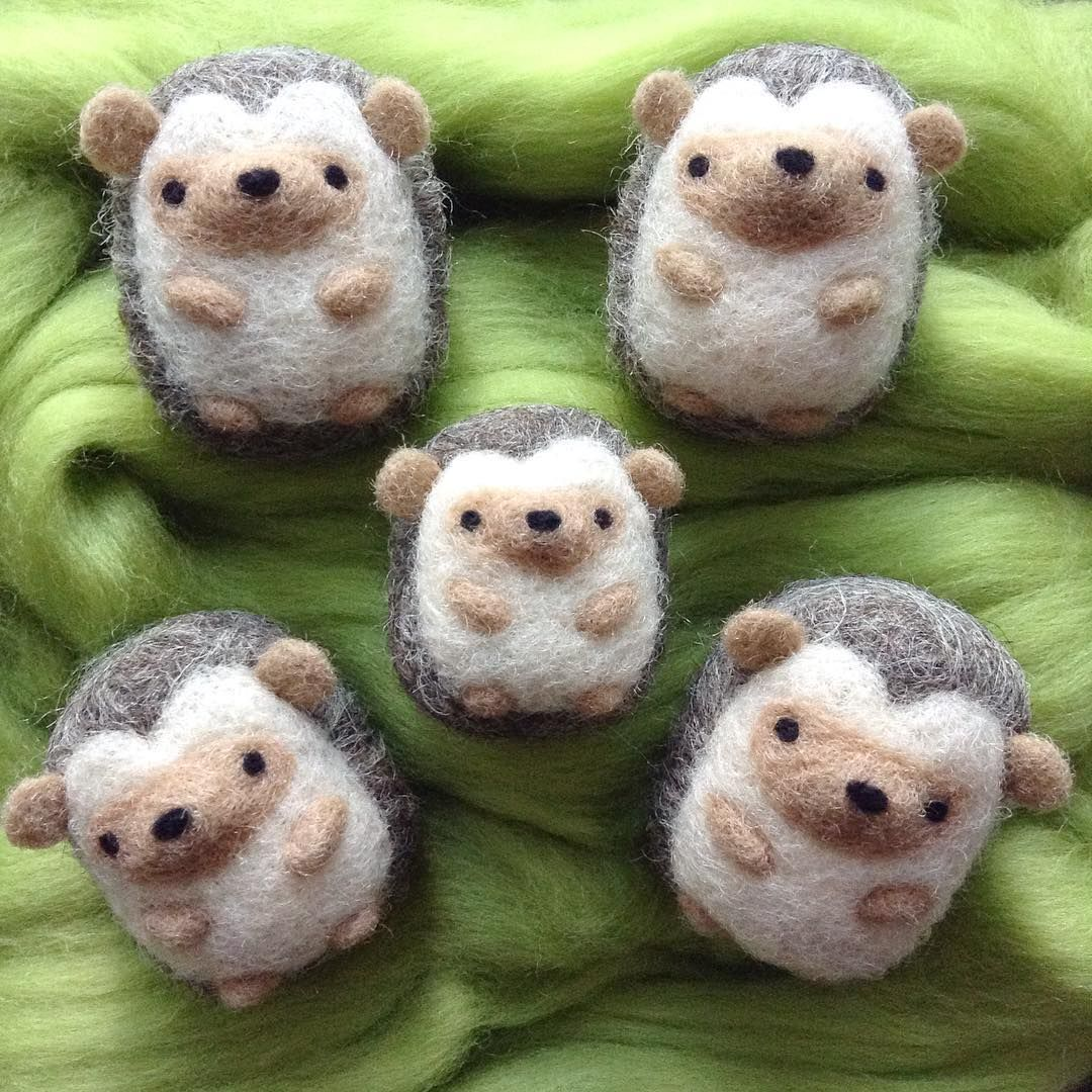 Wild Whimsy Woolies (@wildwhimsywoolies) su Instagram: Mini hedgies having a lazy Sunday . . . #hedgehogs #hedgielove #hedgies #hedgehogsofinstagram… #needlefeltedanimals