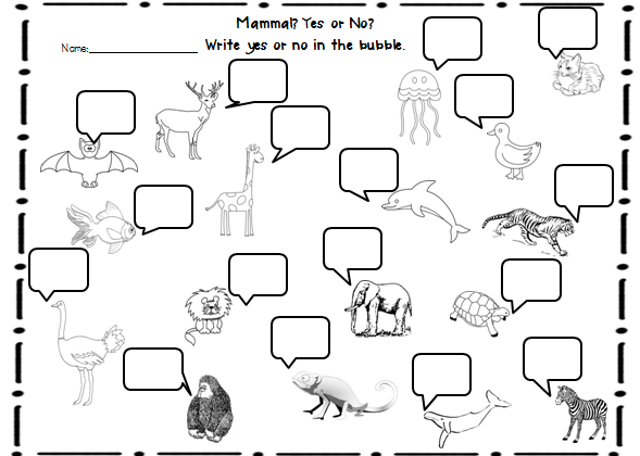 Sample's Superstars: Animal Classifications Unit | STEM ...
