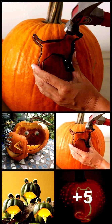 #carving #Creative #Halloween #Ideas #pumkincarvingd #pumpkin 51+ Creative Pumpkin Carving Ideas You Should Try This Halloween #pumkincarvingdesigns 51+ Creative Pumpkin Carving Ideas You Should Try This Halloween,  #Carving #Creative #Halloween #pumpkincarvingstencils