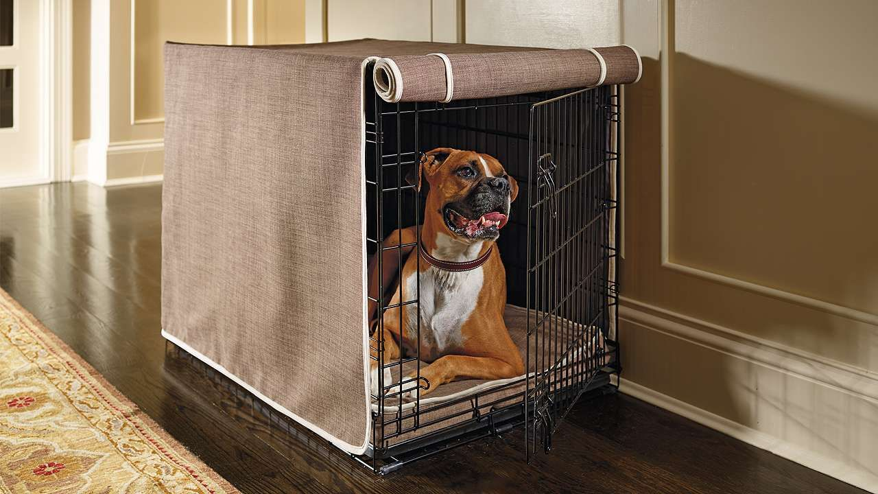 Crate Mattress and Crate Cover Set Crate cover, Dog