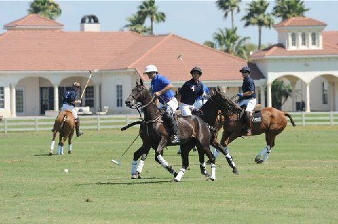 Polo in Wellington, FL | Palm beach county, Florida, Palm ...