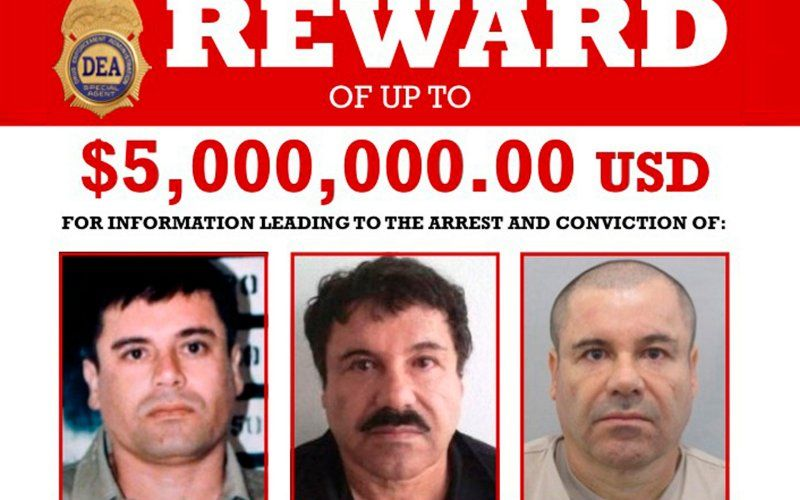 Don Winslow, Author of 'The Cartel,' Levels About El Chapo