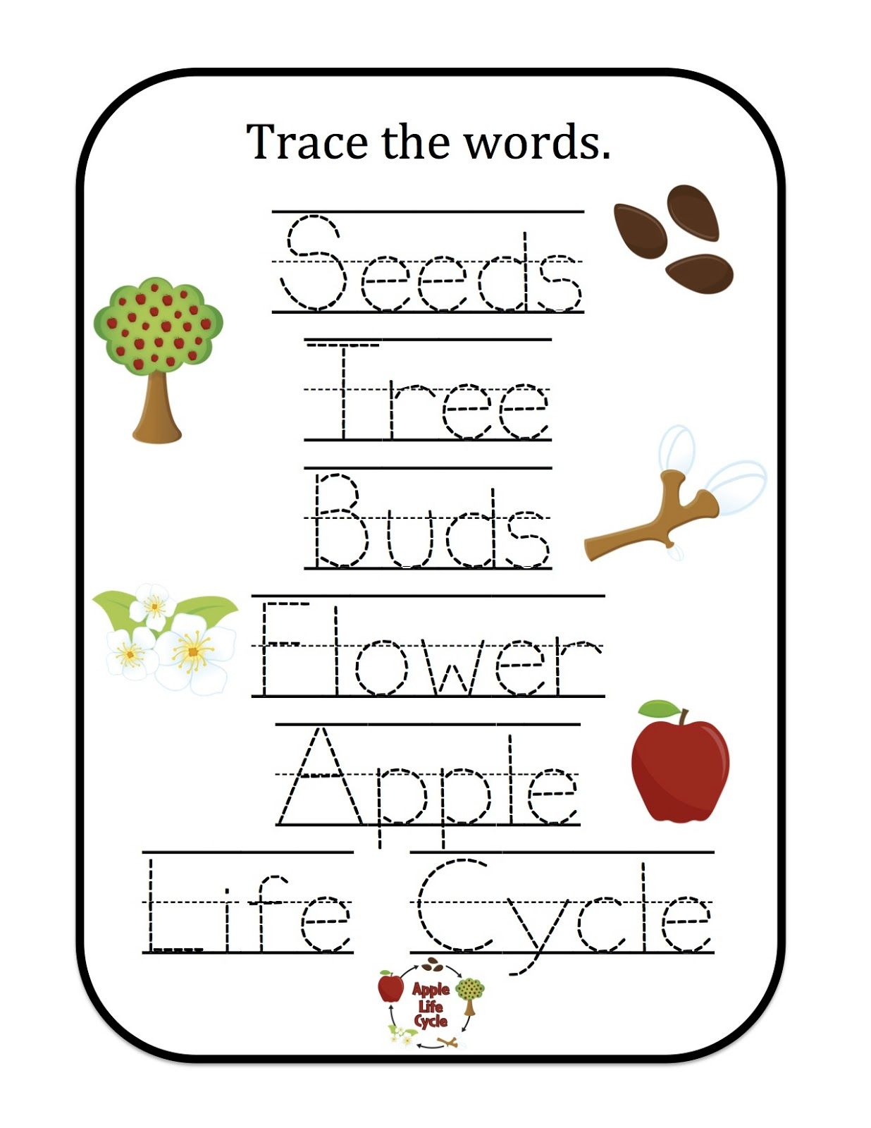 Apple Life Cycle Pattern Worksheets For Kindergarten Kindergarten Worksheets [ 1600 x 1236 Pixel ]