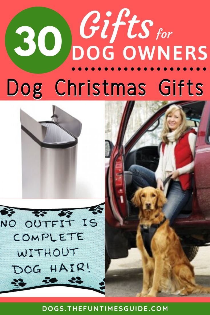Best gifts for dog lovers 30 dog gifts for dog owners