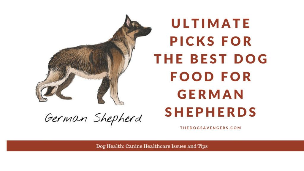 Ultimate Picks For The Best Dog Food For German Shepherds Best