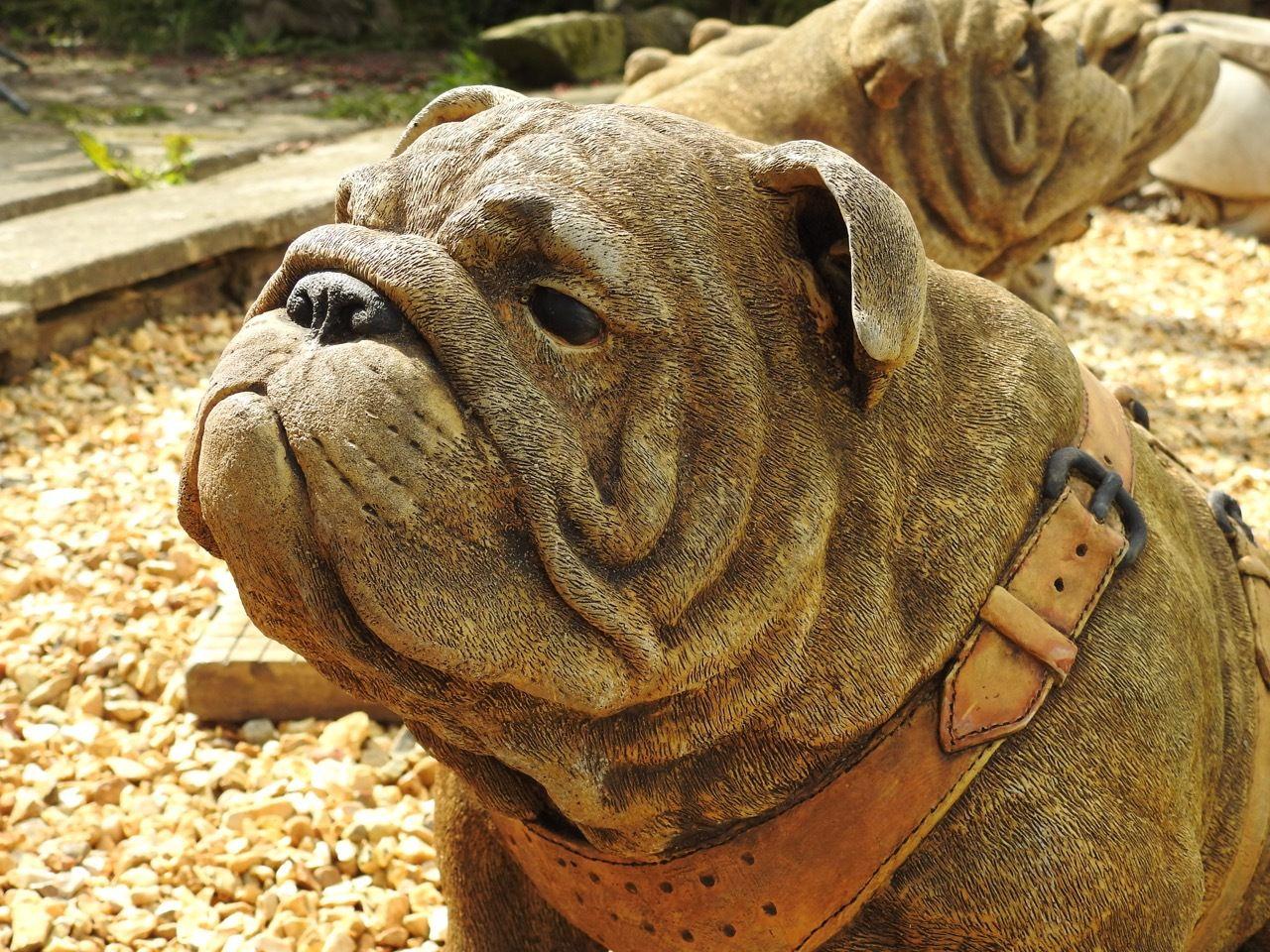 Exclusive Stone Cast Life Size Sitting British Bulldog House