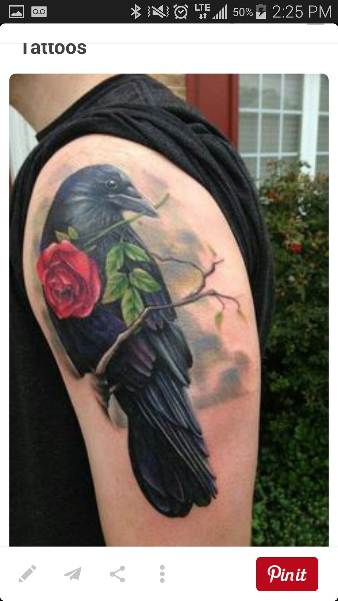 Pin by alexis walker on possible ink pinterest although raven is really smart but i still not like it because sometimes raven symbolize death so raven tattoos are amazing to me i admit i will not buycottarizona