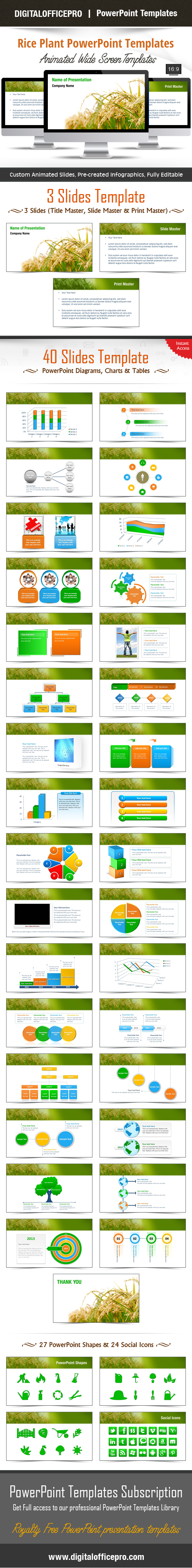 Rice plant powerpoint template backgrounds powerpoint templates impress and engage your audience with rice plant powerpoint template and rice plant powerpoint backgrounds from digitalofficepro each template comes with a toneelgroepblik