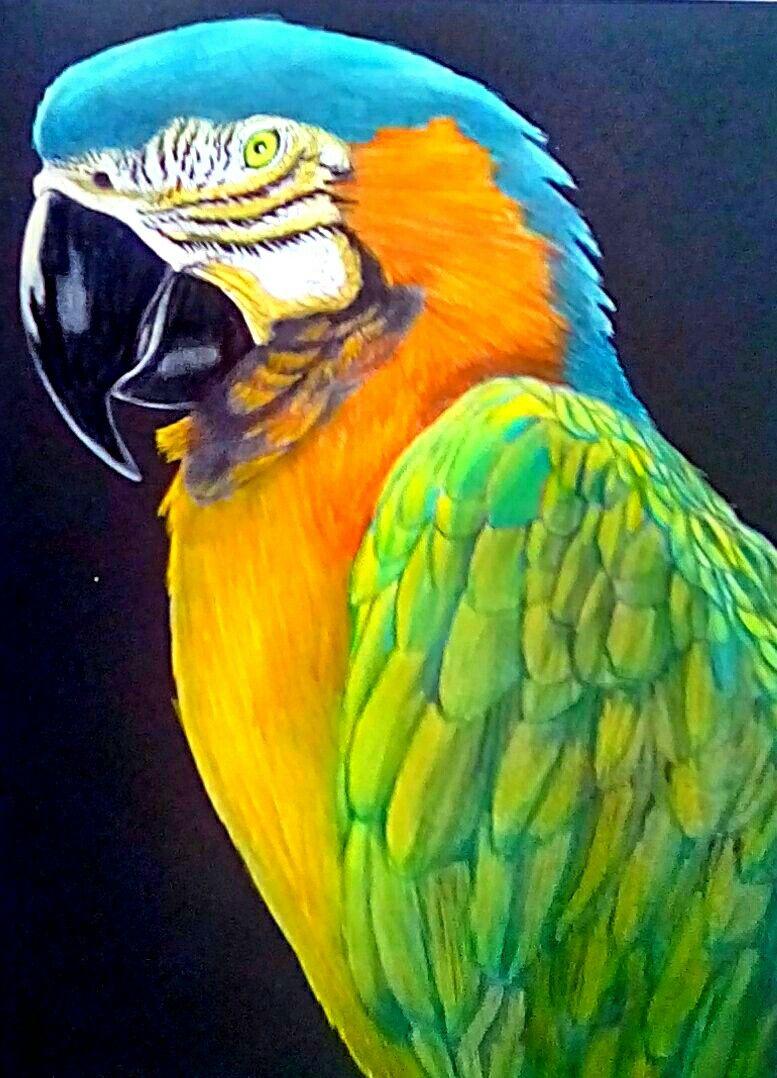 Tim Jeffs Art Schilderij Kleuren Kleurplaten