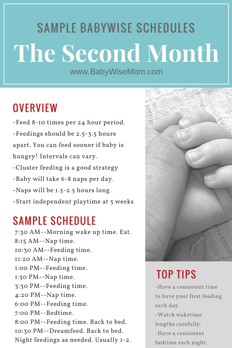 Babywise Sample Schedules The First Month  Advice Babies And