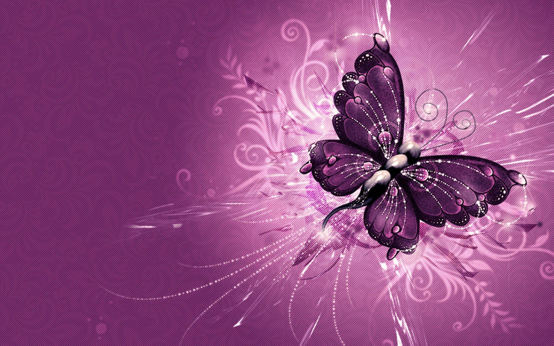 purple butterfly wallpaper hd - http://imashon/w/purple