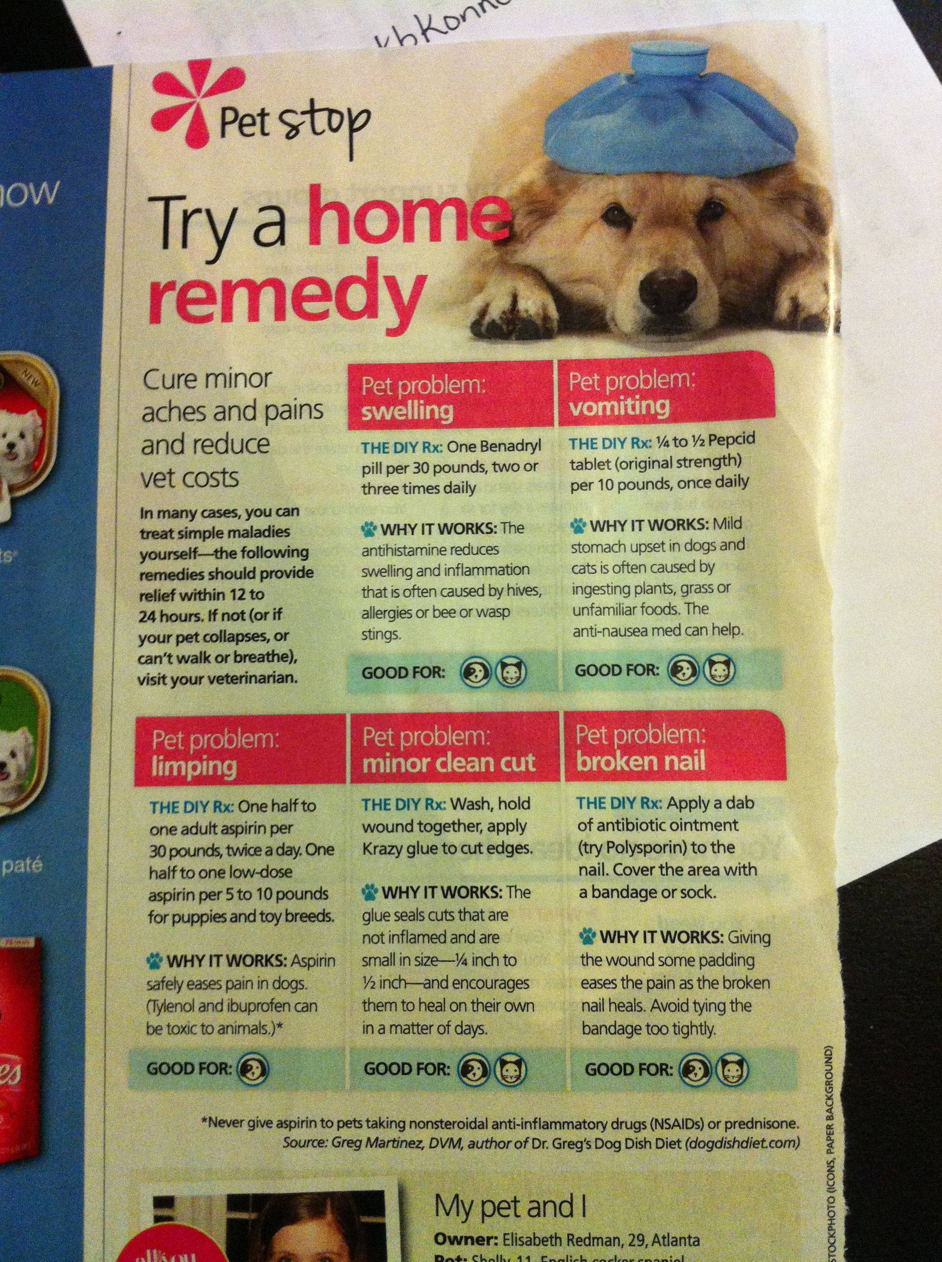 Pet Home Remedies Animal Medicine Home Remedies Pets