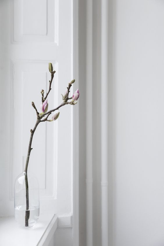 Magnolia branches, Sara Medina Lind, via http://www.scandinavianlovesong.com/