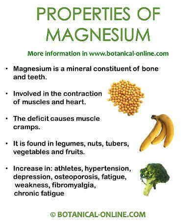 Magnesium Rich Foods List Printable | Properties Of Magnesium