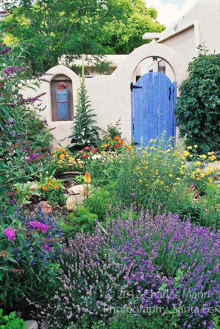 A Santa Fe Garden Vignette Features Lavender, Buddleia, Poppies And Other  Colorful And Drought