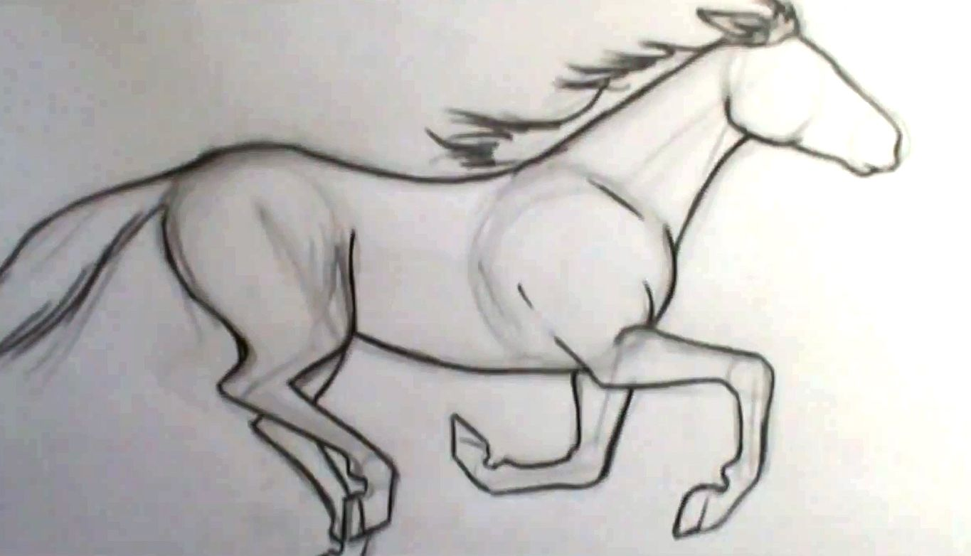 Comic Book Video Tutorials €� How To Draw A Horse Galloping Great Video With  A Step