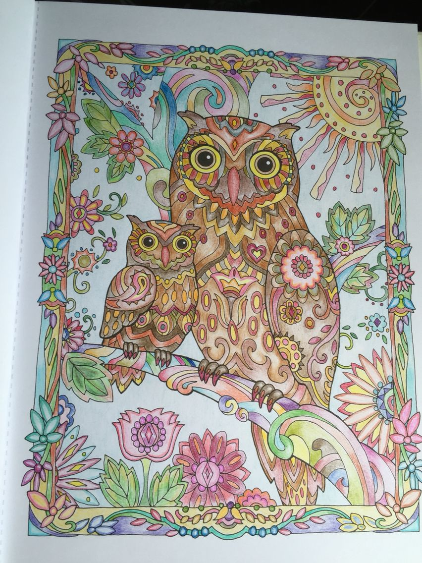 Anti stress colouring book asda - Creative Haven Owls 1 Adult Coloringcoloring Bookscoloring