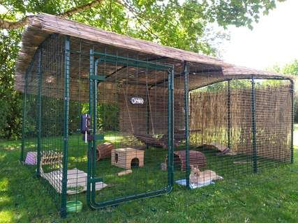 Boxed Underfloor Mesh for Outdoor Run  4 Panels - Outdoor rabbit run, Rabbit enclosure, Rabbit run, Outdoor rabbit hutch, Rabbit habitat, Indoor rabbit - Choose from Two Heights of Outdoor Rabbit Run     Read More…           Choose from Two Heights of Outdoor Rabbit Run           The Outdoor Rabbit Run is available in two heights  The HiRise version allows you to literally walk straight in  You can then spend more time hopping about with your pet rabbits, tidying the run and topping up their hay rack and water bottle, all with the greatest of ease  The LoRise version is a spacious rabbit run, giving your bunnies a large floor area, at a lower height and a lower price (of course if you are less than (3 81ft tall you can still walk in)  Both sizes of run are suitable for the smallest, such as Mini Rex, to the largest, such as Giant Angora, breeds of rabbit                  The LoRise Outdoor Rabbit Run has plenty of floor space and the height can be extended at a later date                    The HiRise Outdoor Rabbit Run allows you to walk in to spend time with your pet bunnies                             Stable Style Rabbit Enclosure Door     Read More…           Stable Style Rabbit Enclosure Door                The HiRise Outdoor Rabbit Run has a full height stable door making it easy to throw in some treats                     If you opt for the HiRise Outdoor Rabbit Run, you'll have the benefit of a stable style door  The top and bottom of the door open independently allowing you to throw in some healthy treats for you rabbits without them hopping out to explore the rest of the garden  Extra doors can be purchased and added to the rabbit run in various positions too  The LoRise version of this outdoor rabbit enclosure still has a large door which is easy to reach through and top up your bunny's hay rack and water bottle  Children will find it easy to crawl in and sit with their pets too                             The LoRise Outdoor Rabbit Run has a large door, g