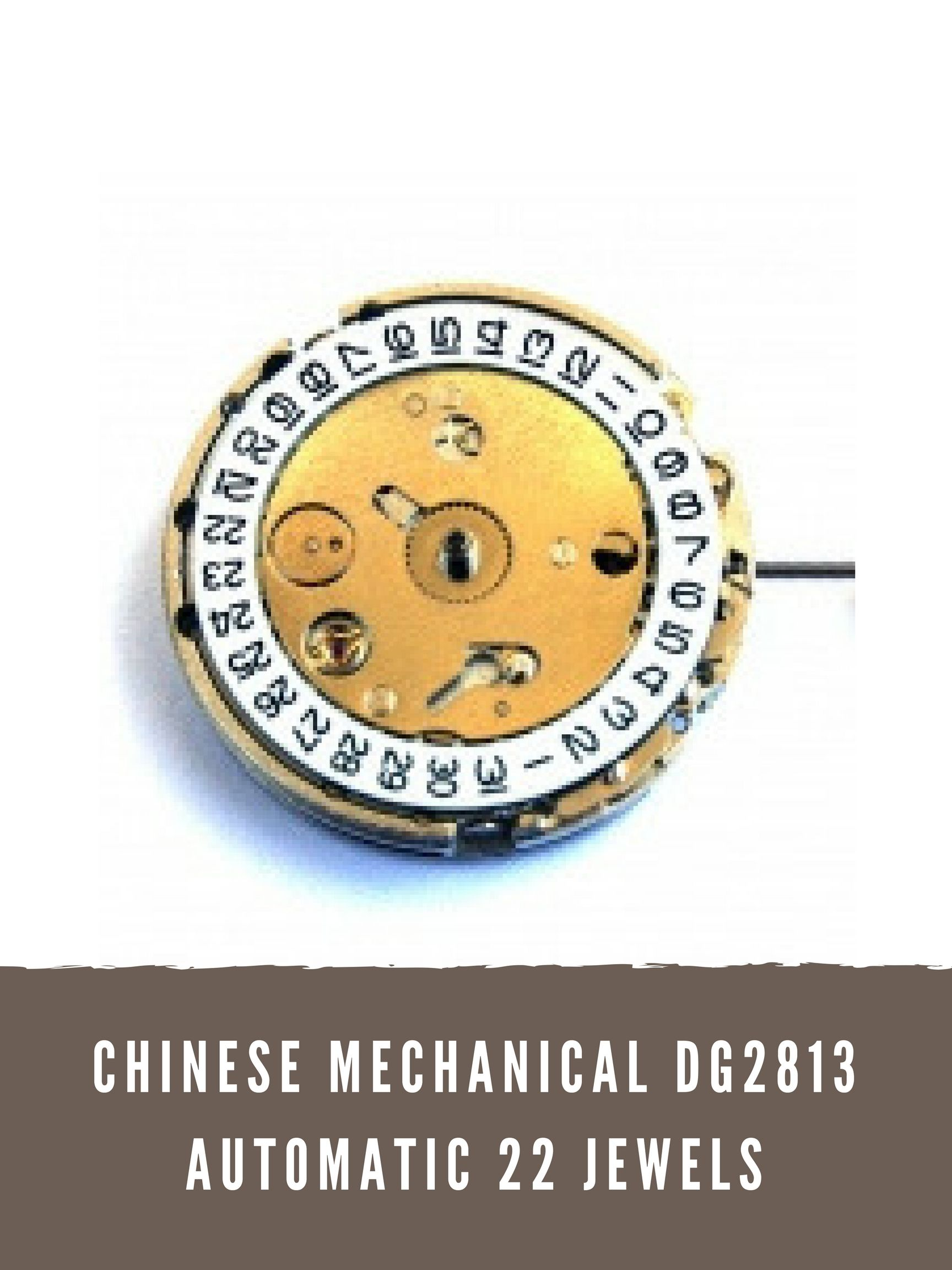 Chinese Mechanical Dg Watch Movement Are Used In Many