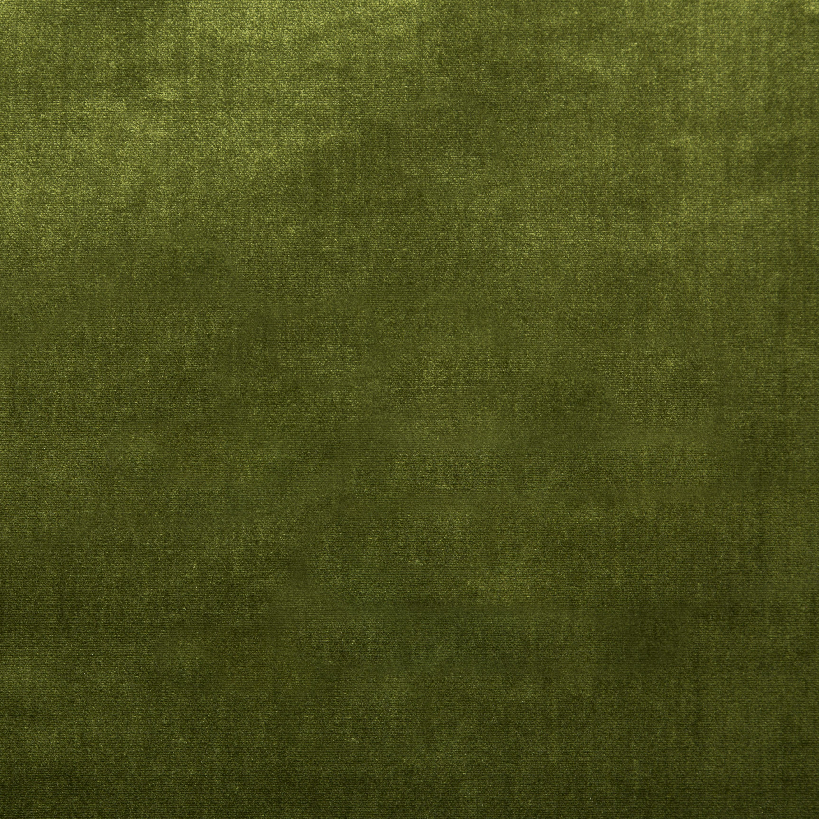 Duchess Velvet Olive Green Velvet Fabric Green Velvet Pillow Textured Carpet