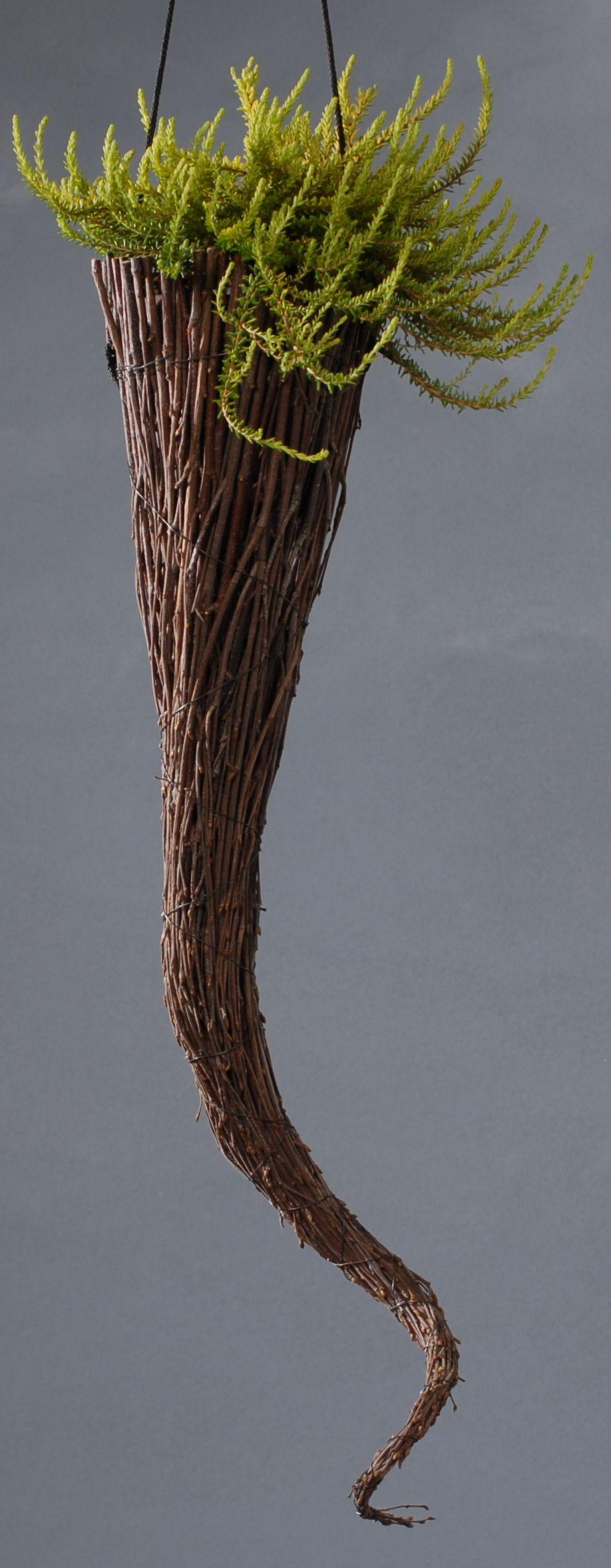 Tötteröamppelin koristeena on kaarnikka eli variksenmarja!