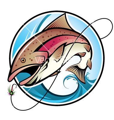 Rainbow Trout Vector Image On Dengan Gambar Ilustrator Pulau
