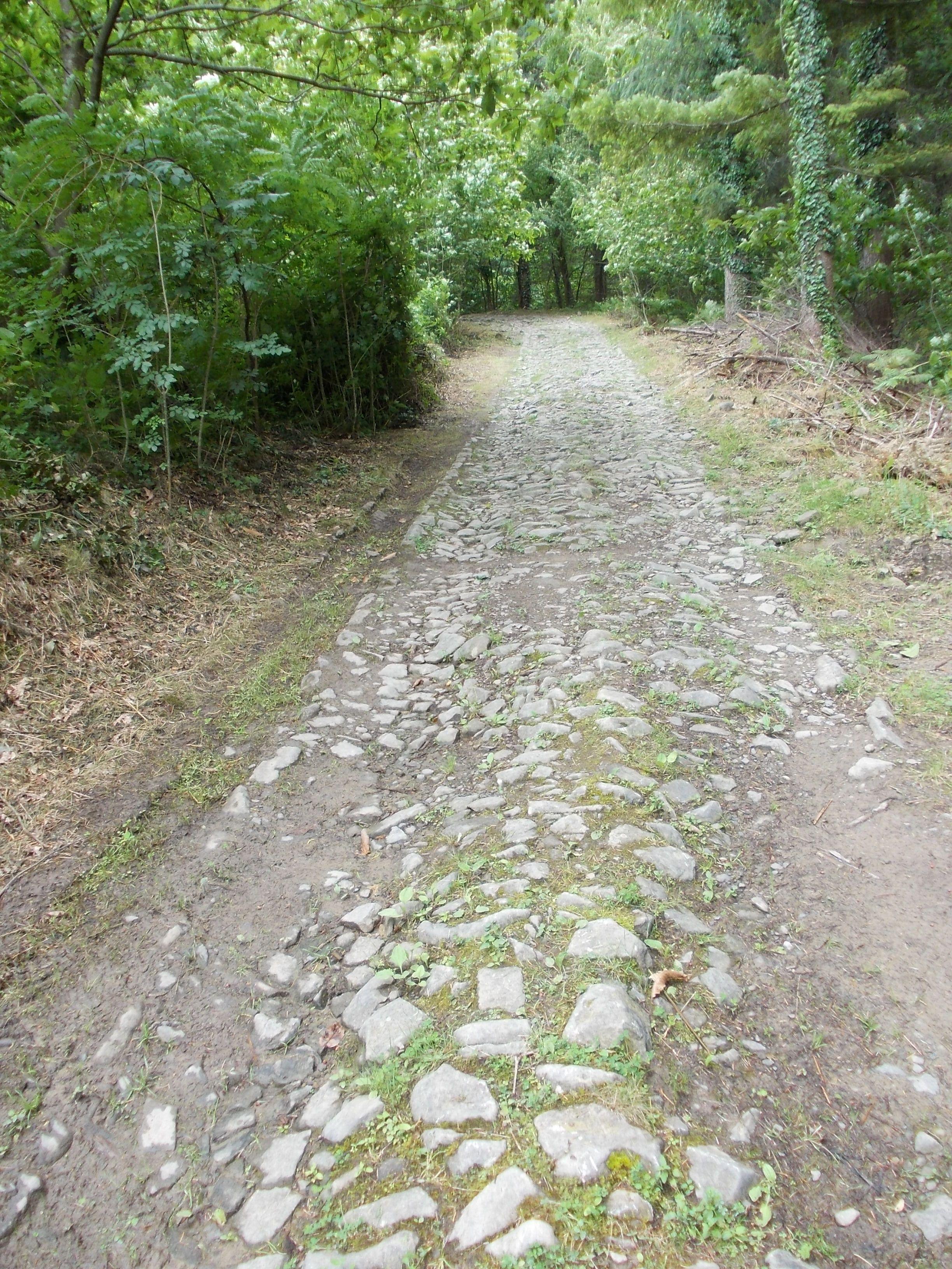 Tratto di vecchia strada medievale (Castiglione Garfagnana )