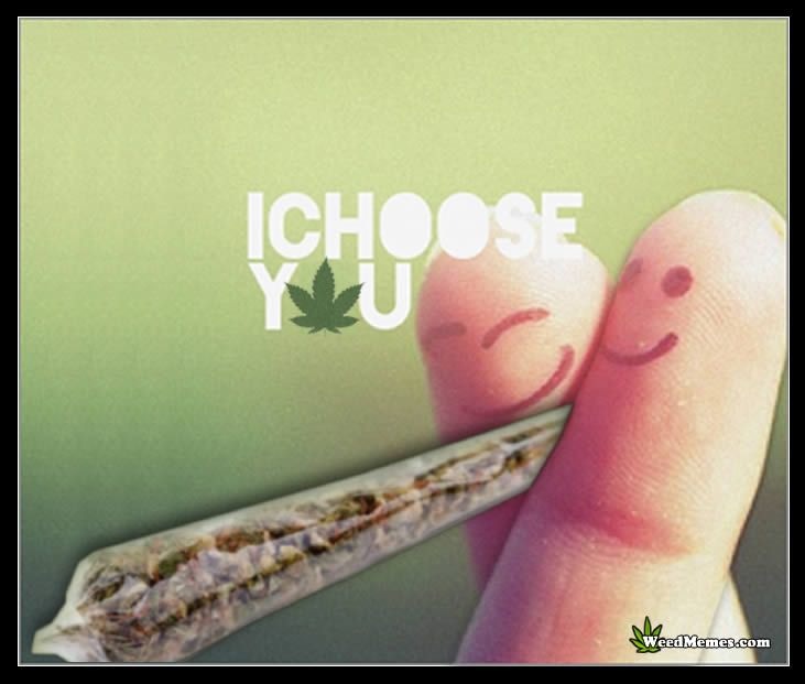 I Choose You I Choose Weed – Marijuana Memes #weedmemes