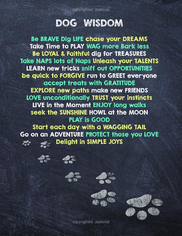 Dog Wisdom: Dog Wisdom Journal and Sketchbook ...