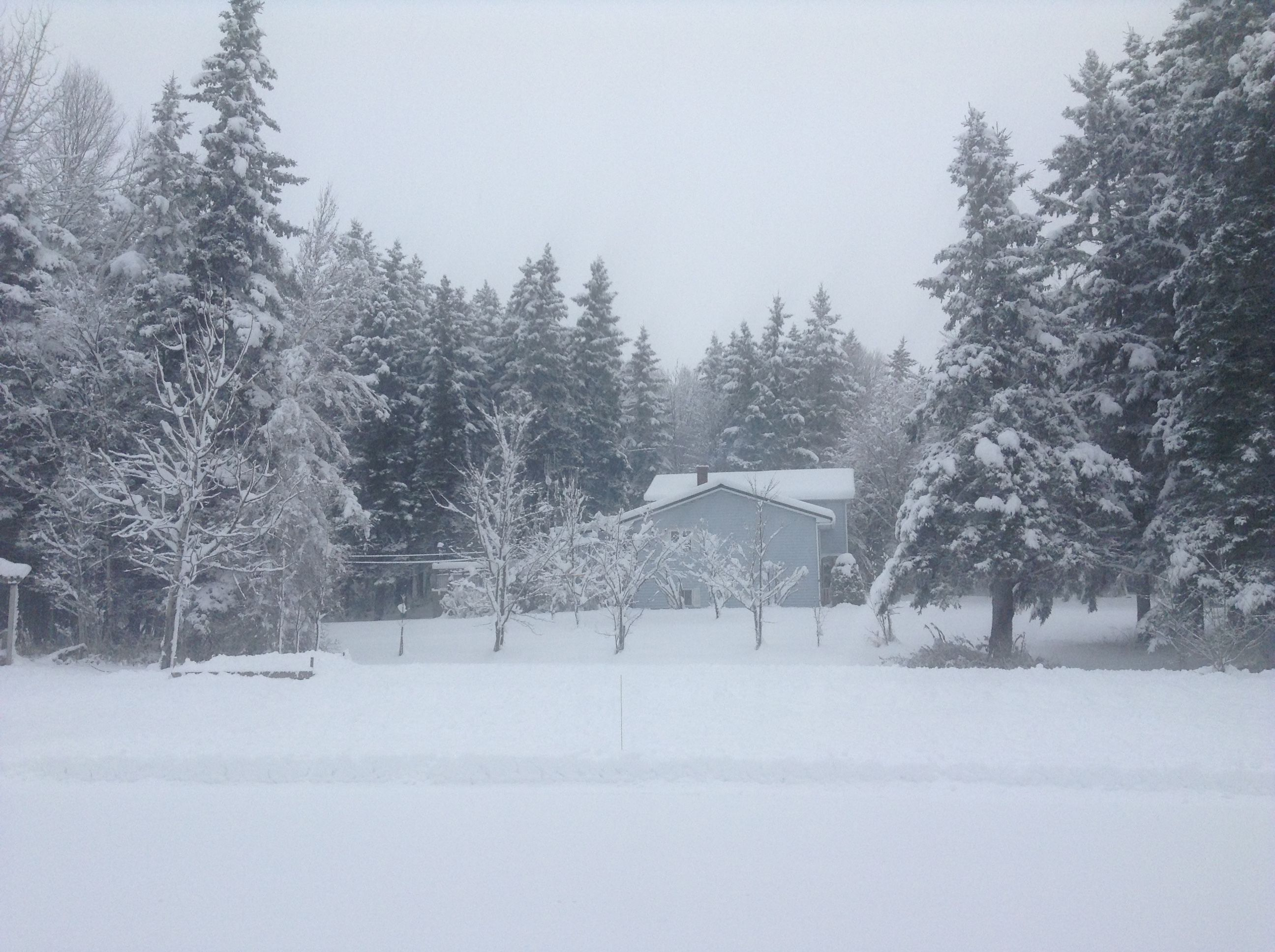 Moncton first snowstorm of the 2016-2017 winter season