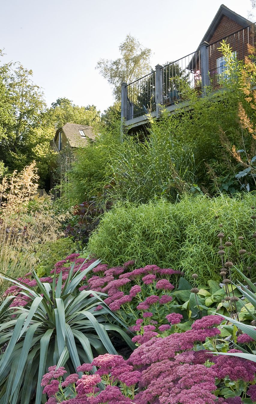 Lush Planting at steeply sloping garden by Acres Wild ... on Sloping Gardens Design Ideas id=46232