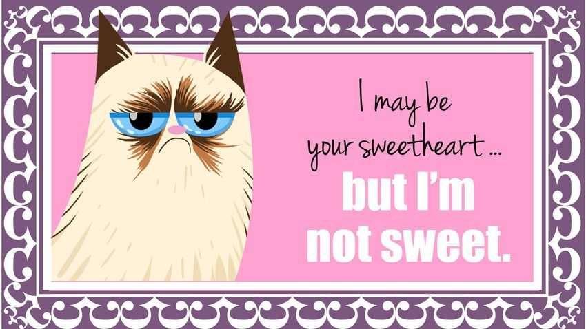 Explore Grumpy Cat Valentines And More!