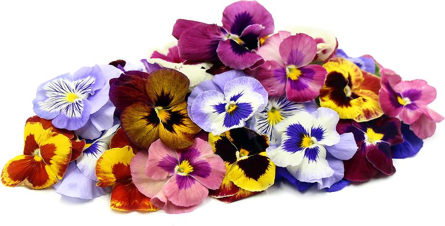 Pansy Flowers Pansies Flowers Floral Arrangements