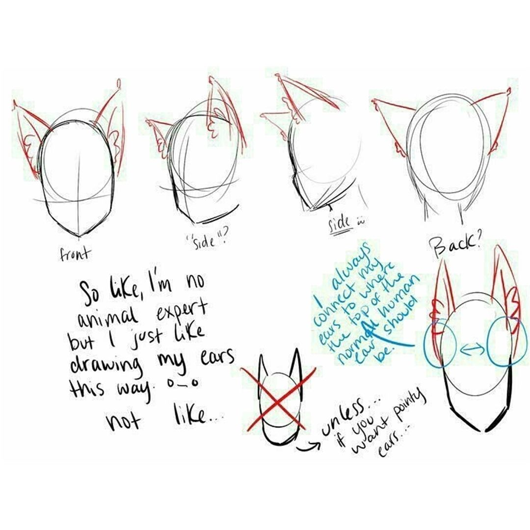 Anime Art Reference Tutorials On Instagram Drawingtips Drawing Tips Eartips Drawing Tutorial Drawing Tips Wolf Ears